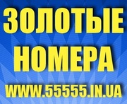 Золотые номера Kyivstar,  MTS,  Life,  Beeline. Низкие цены